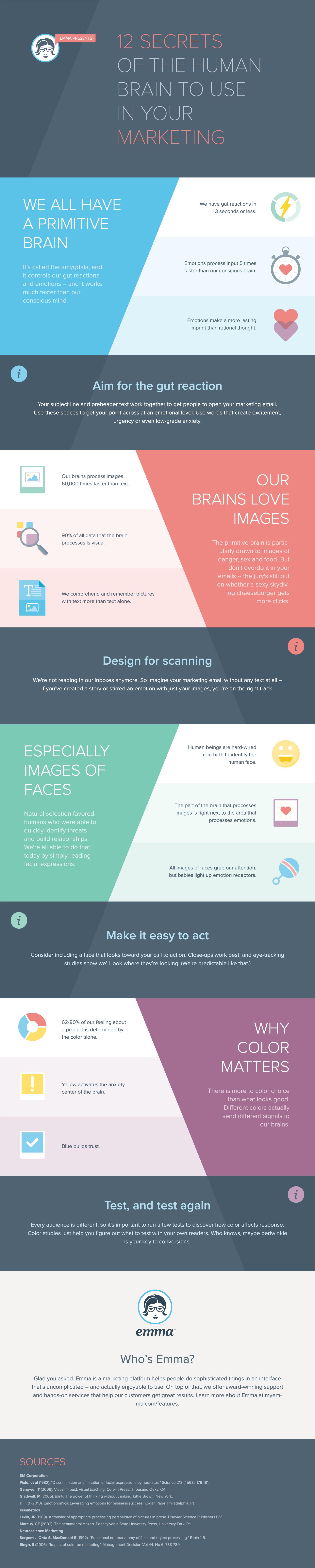 nöromarketing infografik